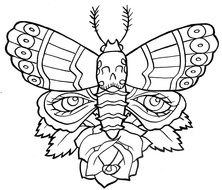 Out Line Art Design : Butterfly tattoo outline cool eyecatching tatoos