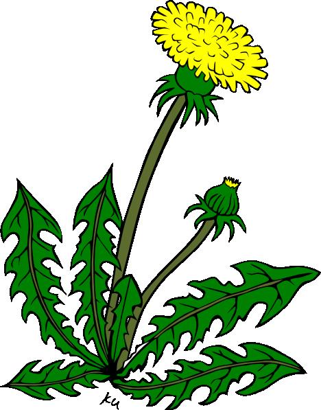 garden weeds clipart - photo #2
