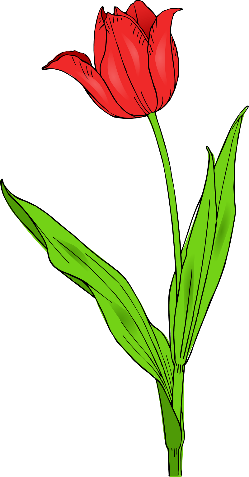 Spring Flowers Clip Art Png Clipart Panda Free Clipart Images
