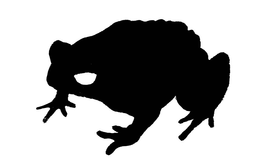 toad clipart cliparts co toad clipart black and white toad clipart images