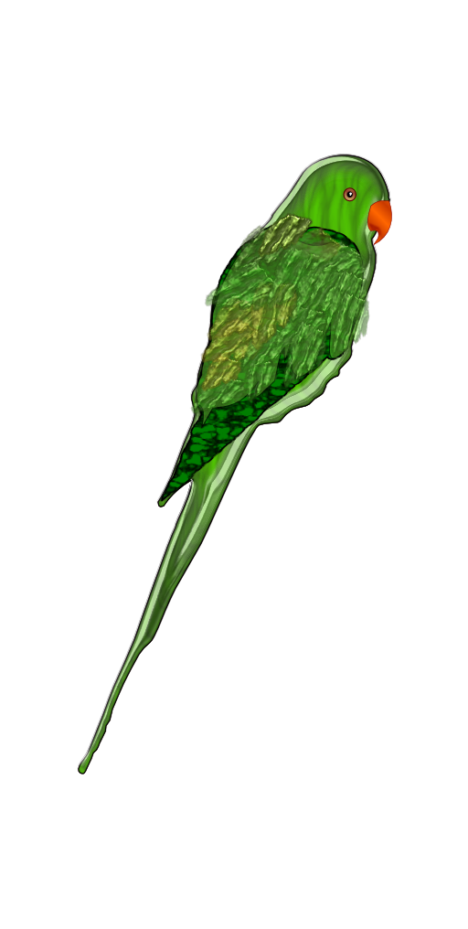 clipart-parrot-512x512-04ab.png
