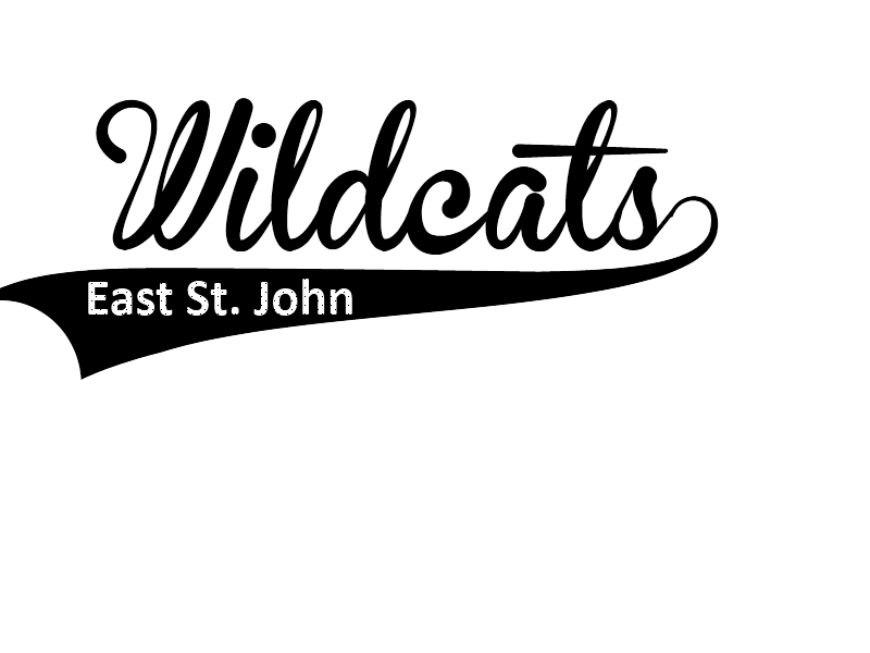 Wildcats image - vector clip art online, royalty free & public domain