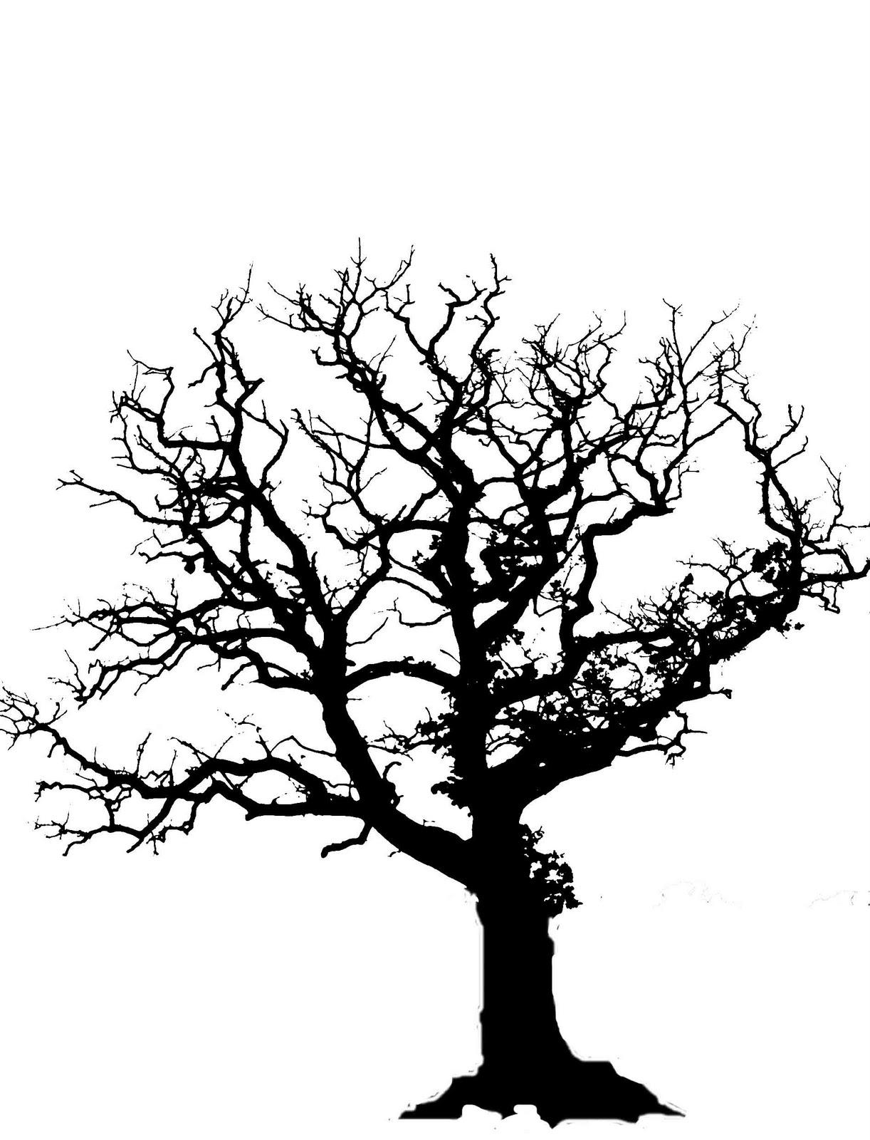 Oak Tree Clip Art Png
