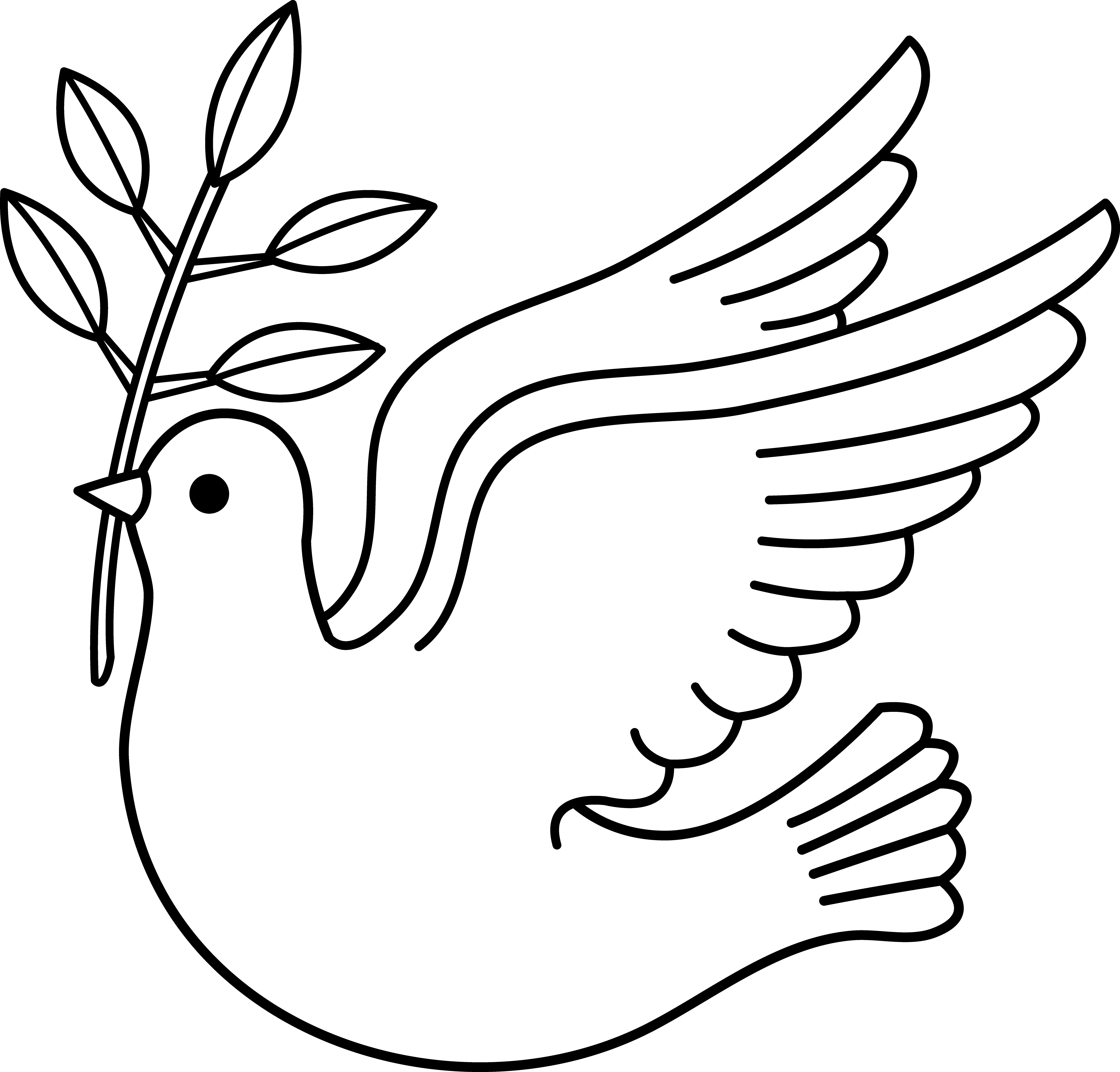 Images For > Flying Dove Outline