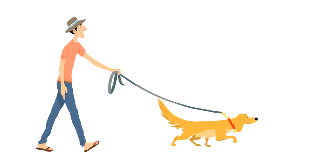 Walk Dog Free Clipart