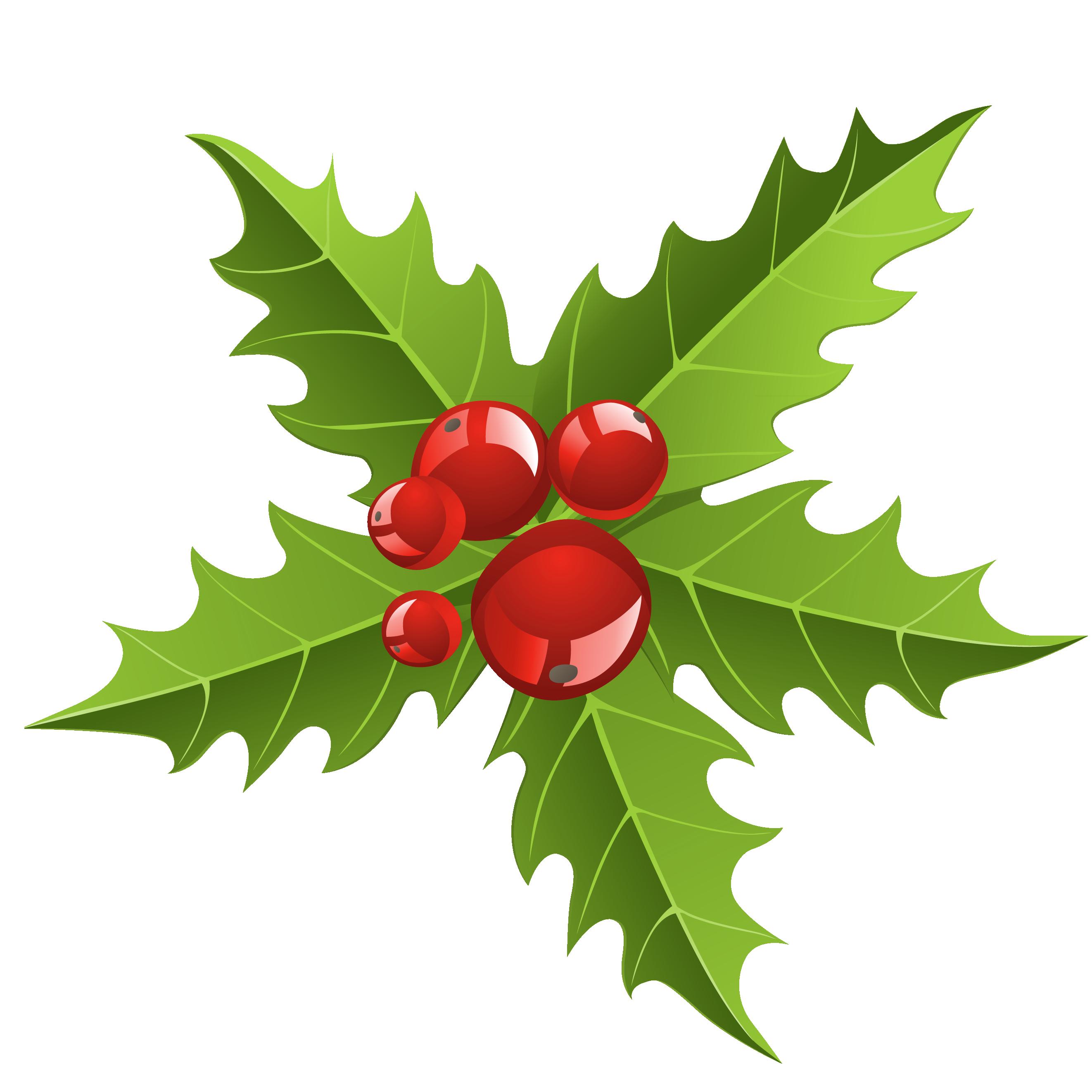 Clipart Mistletoe - Cliparts.co