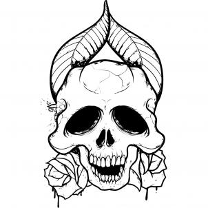 Pictures Of Drawings Of Skulls