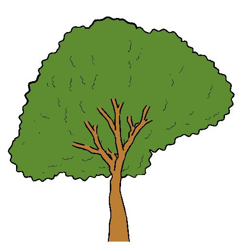 Как сделать анимацию деревьев