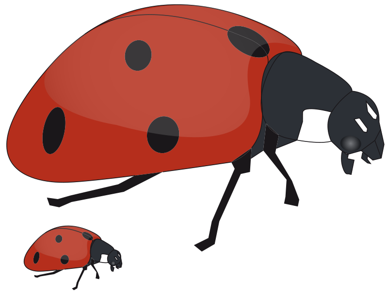 Free to Use & Public Domain Ladybug Clip Art
