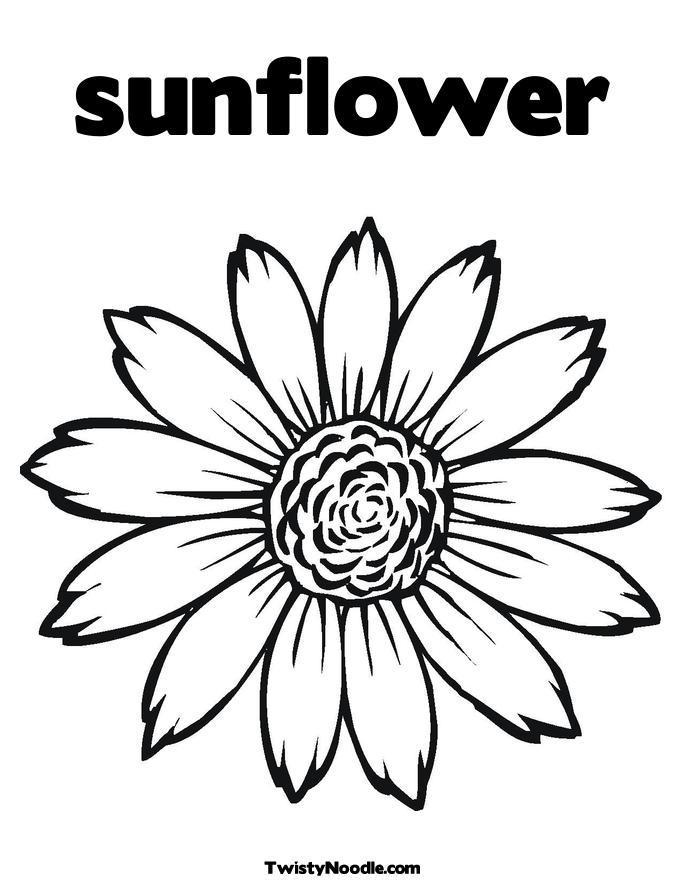 Line Drawing Sun Vector : Sunflower line art cliparts