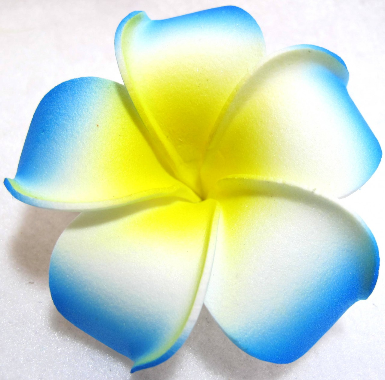 Plumeria Images - Cliparts.co