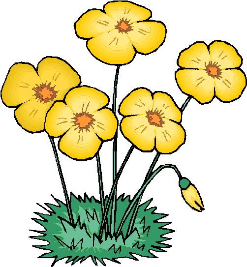 Clip Art - Clip art flowers 921900
