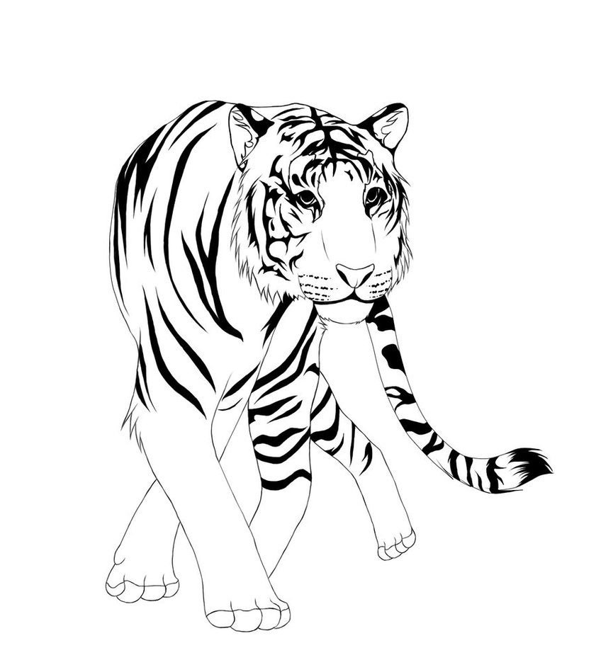 Line Art Images Free : Free line art cliparts