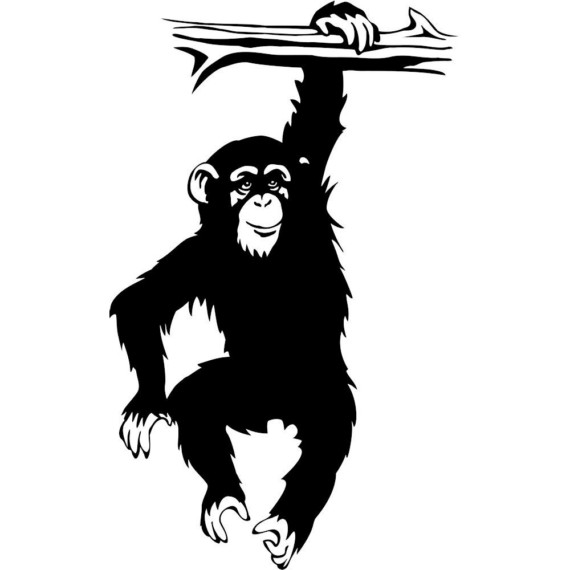 Vinyl decal chimpanzee monkey hanging on tree by thoughtsthatstick