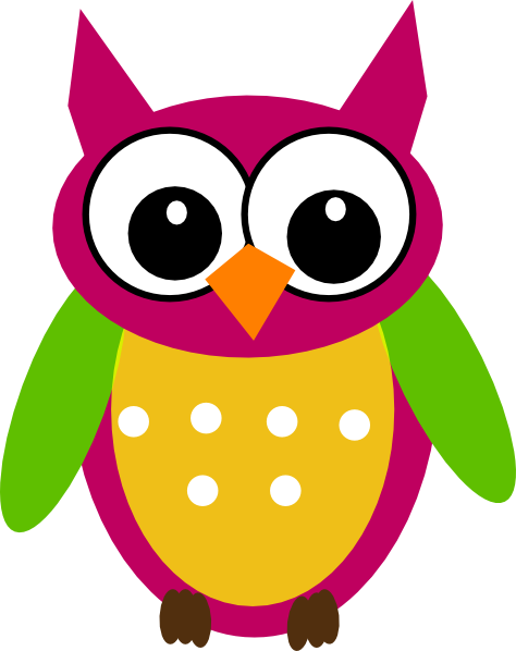 colorful cute owl vector - photo #1