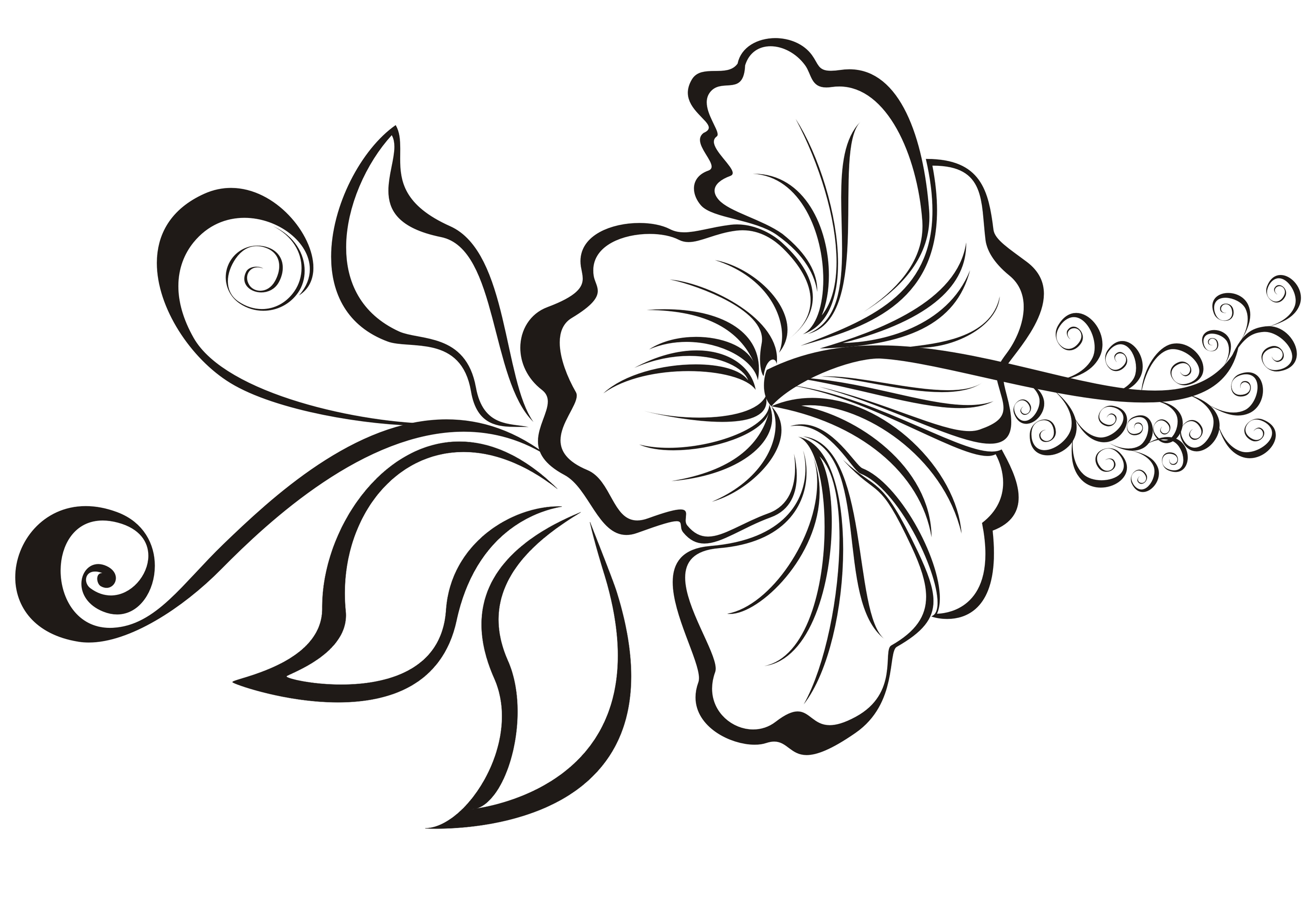 Hibiscus flower designs cliparts hibiscus flower tattoo designs and meaning izmirmasajfo