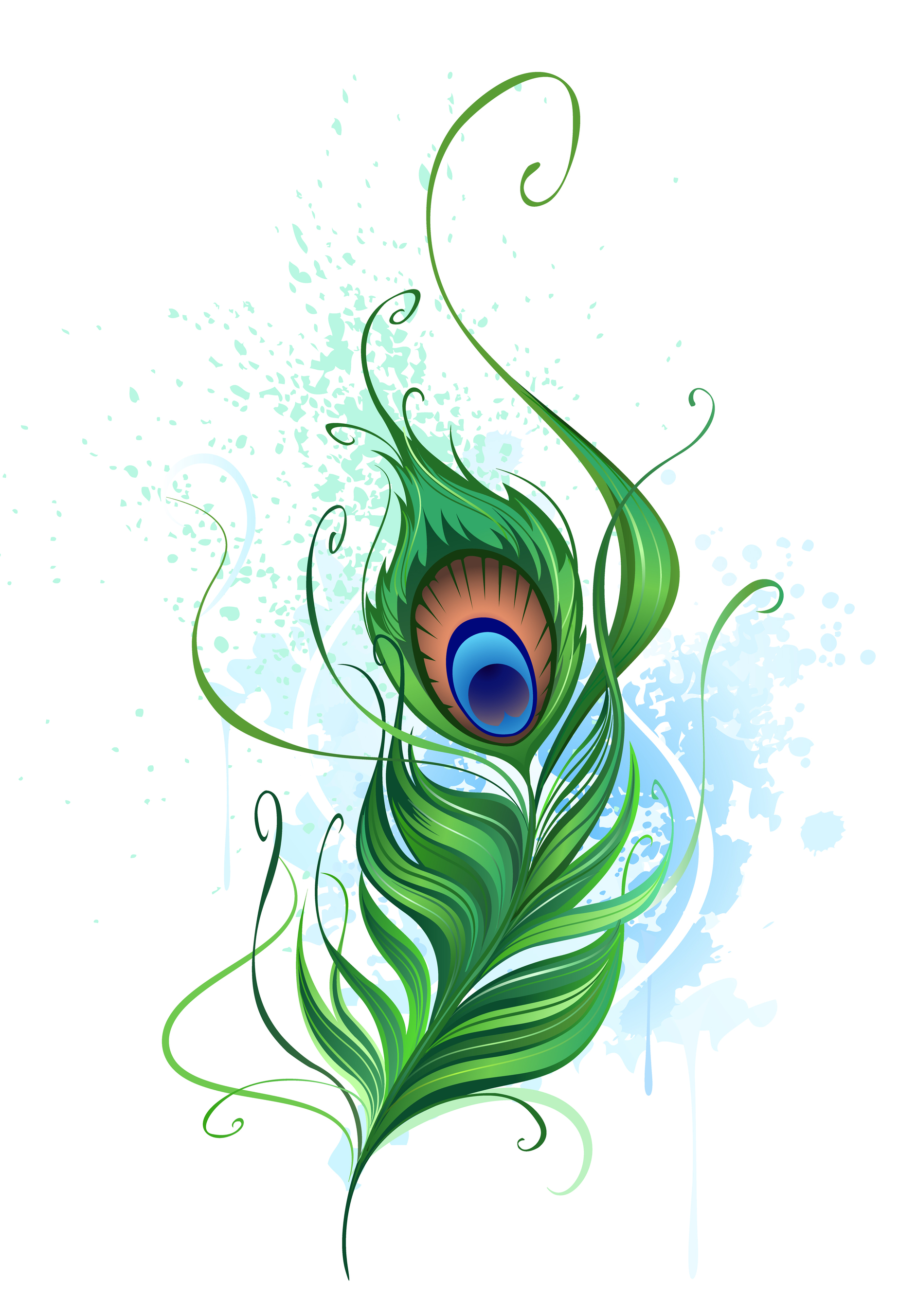 Peacock Feather | Clipart Panda - Free Clipart Images - Cliparts co