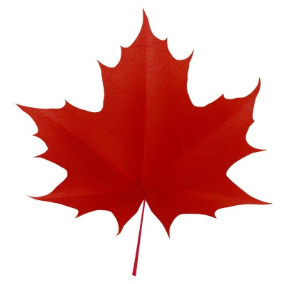 Canadian Maple Leaf - Cliparts.co