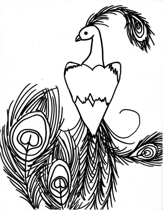 Peacock Drawings ClipArt Best 142681 Peacock Coloring Pages
