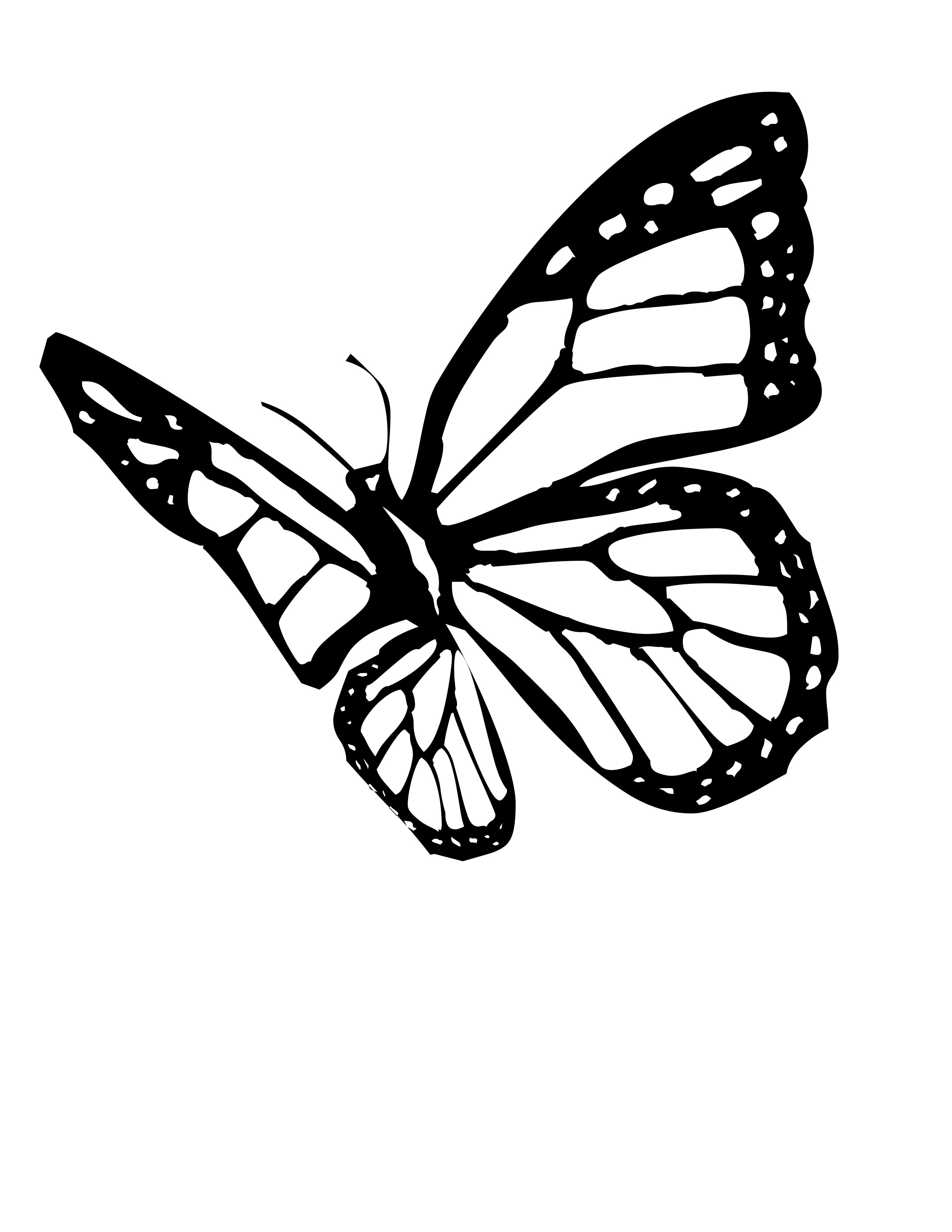 Free coloring pages of butterfly flying