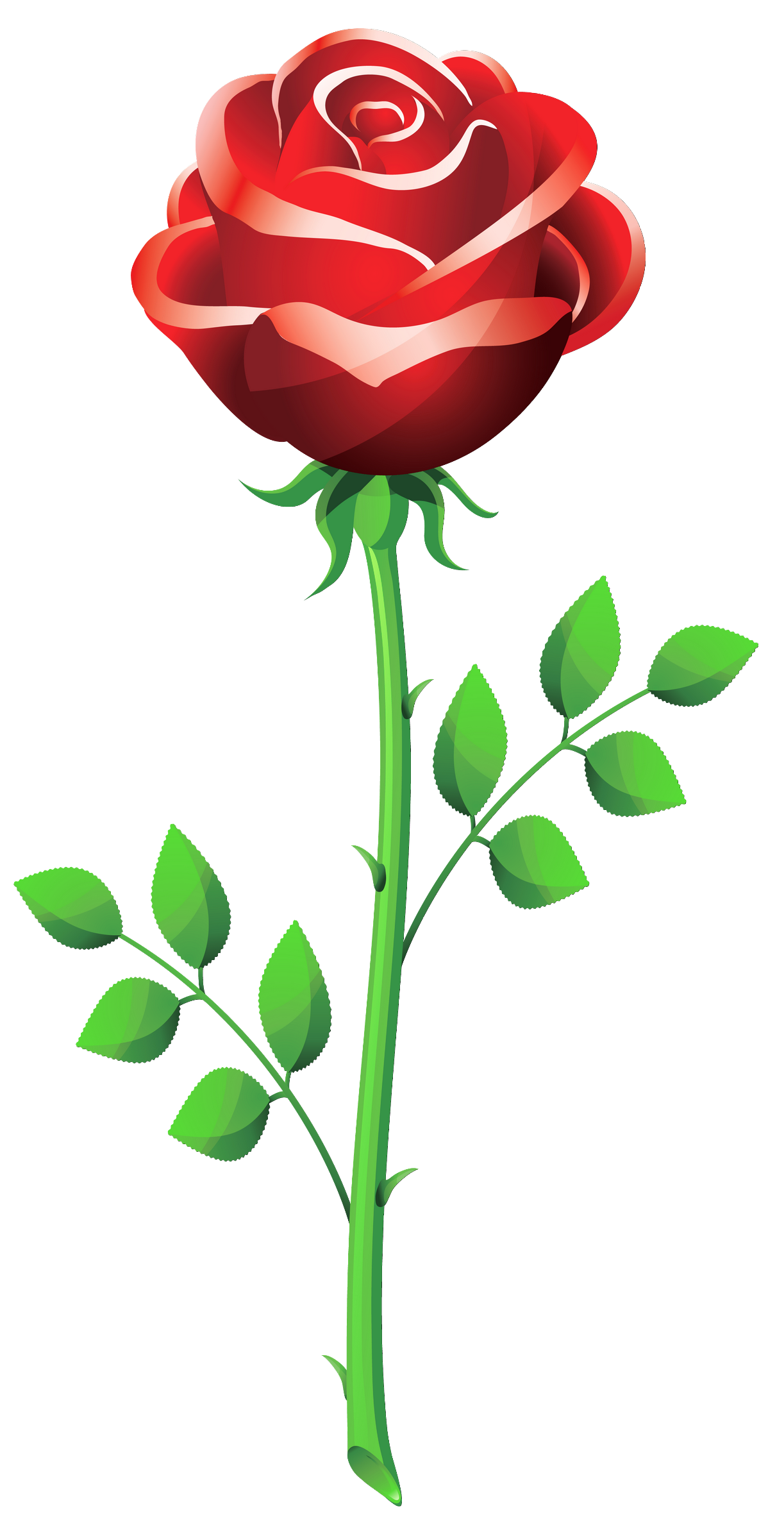 rose clip art sms - photo #4