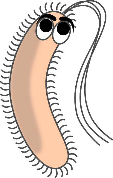 Modified funny bacteria clip art vector clip art online royalty
