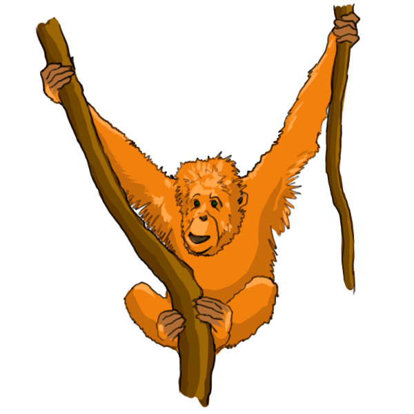 Cartoon Orangutan Cliparts Co