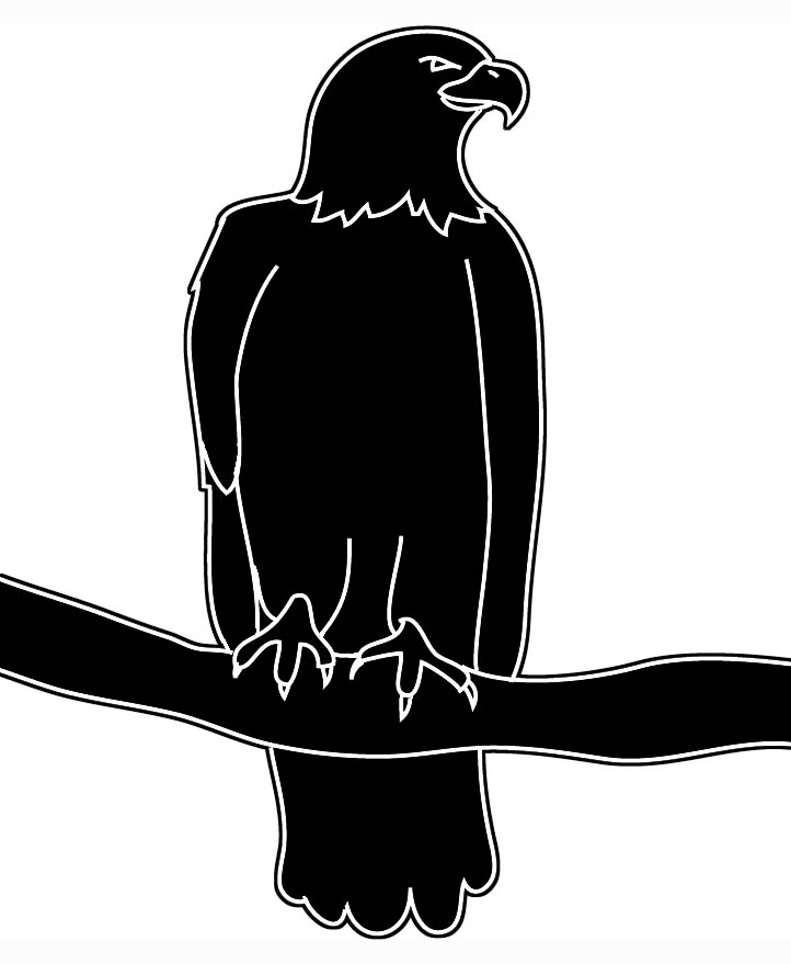 Bald Eagle Silhouette
