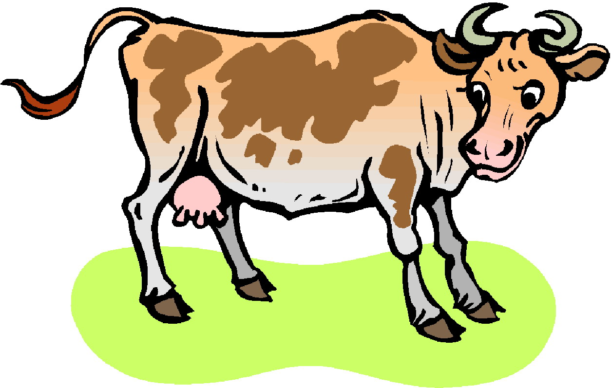Image Of Cow - Cliparts.co