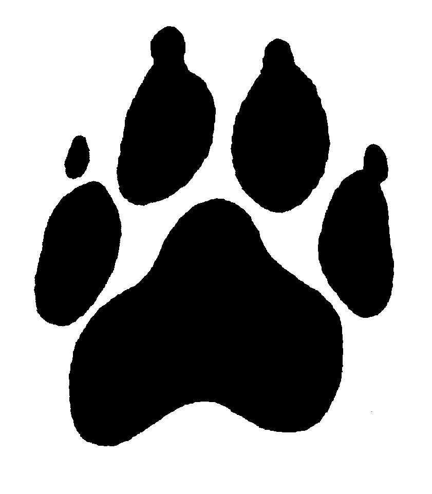 dog paw prints in - photo #23
