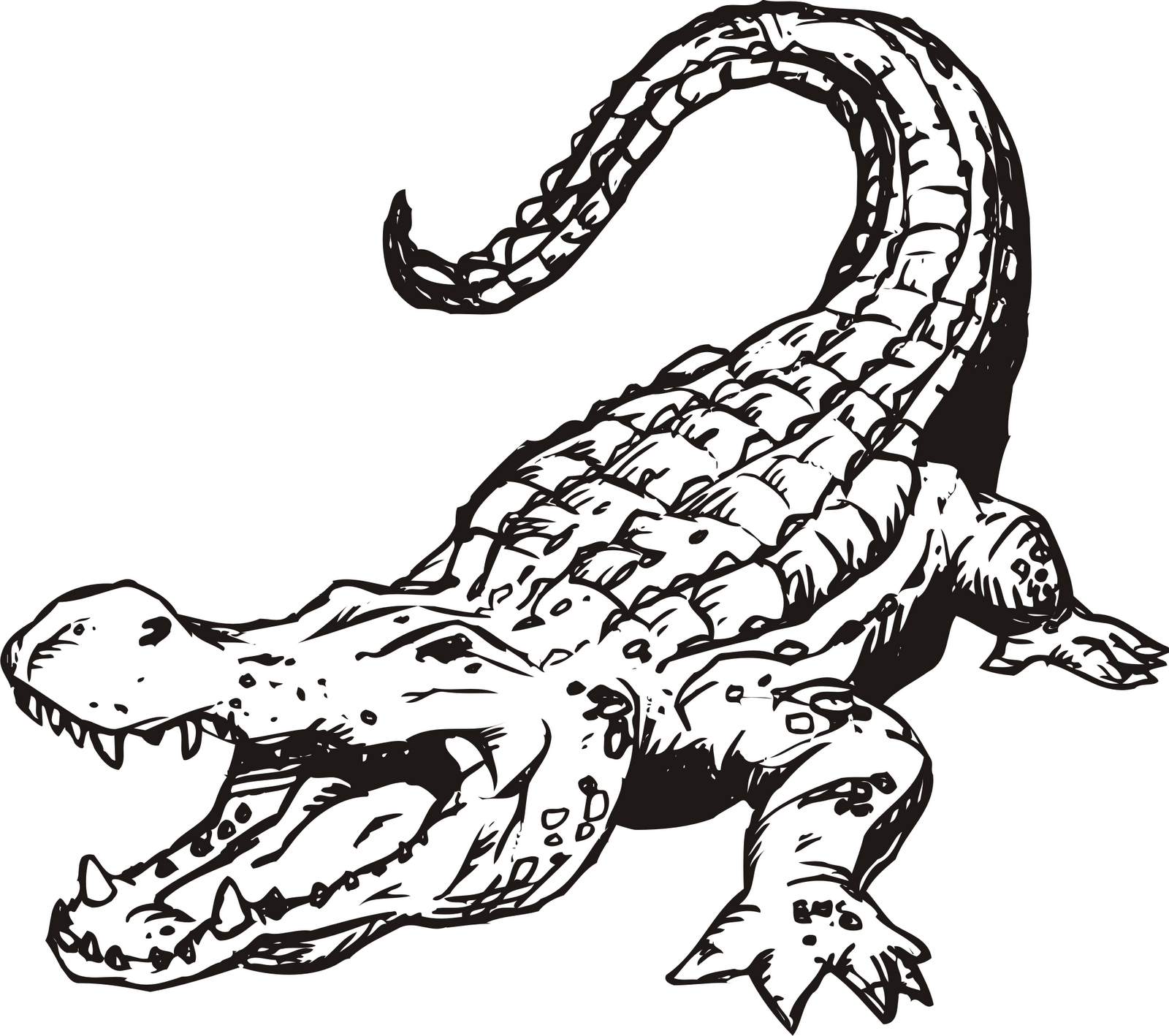 60 images of Alligator Clip Art . You can use these free cliparts for ...