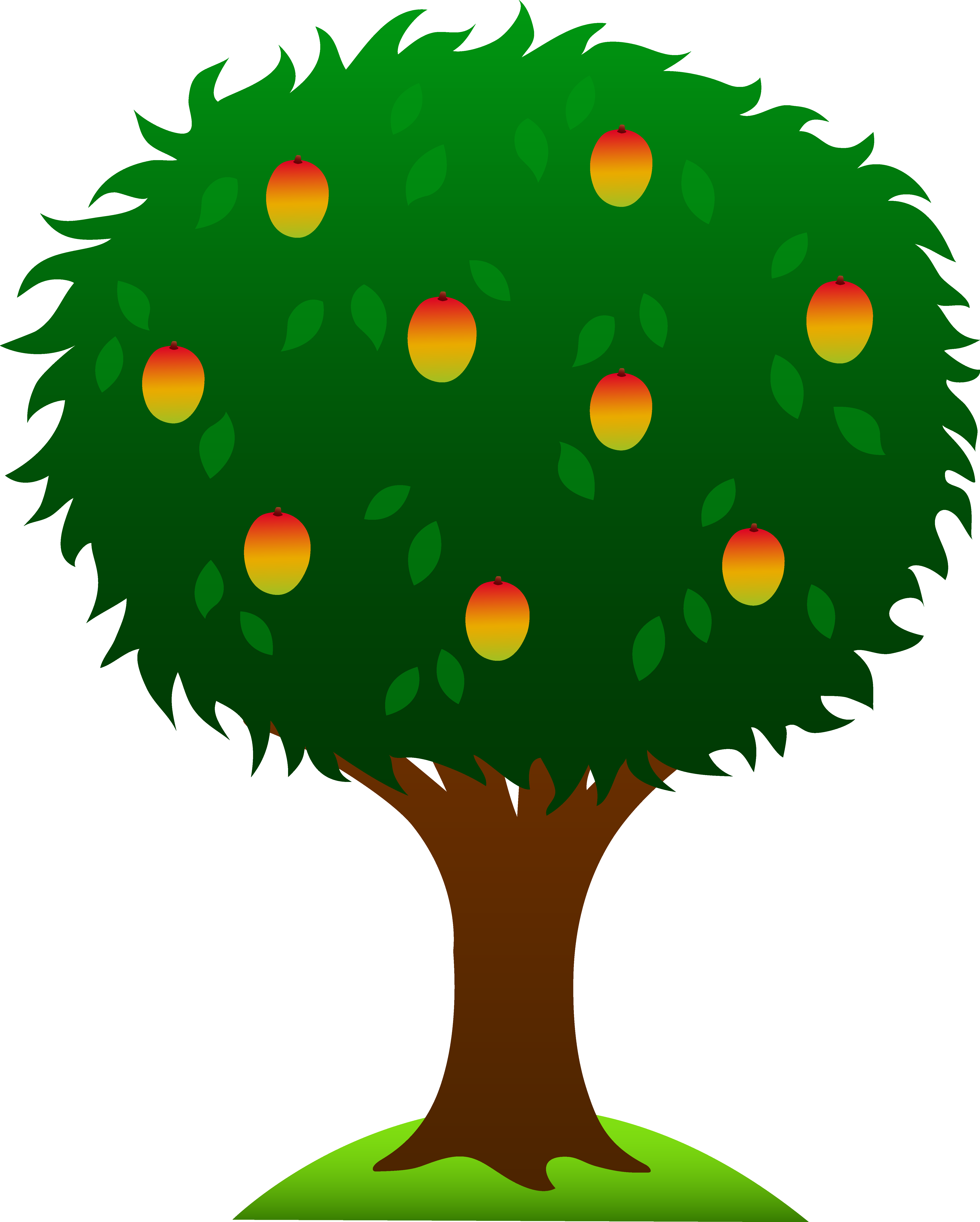 Mango Tree With Ripe Fruits - Free Clip Art