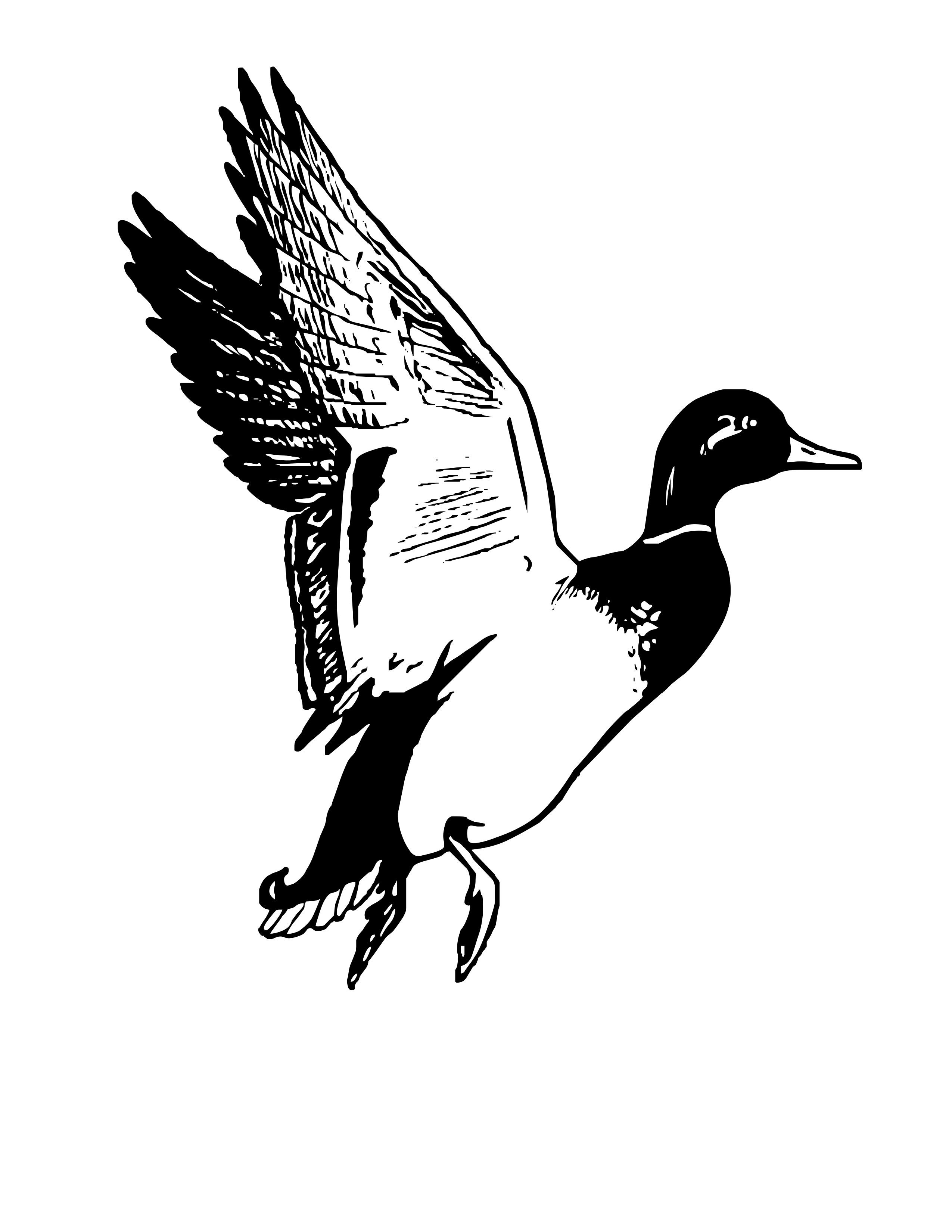 goose hunting clipart - photo #27