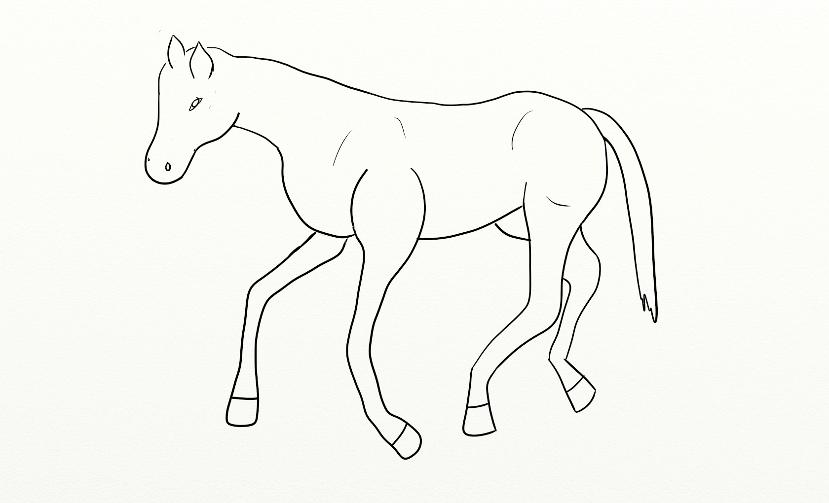zebra outline drawing - photo #36