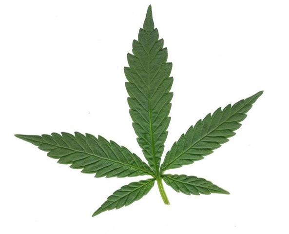 Dibujos De Marihuana