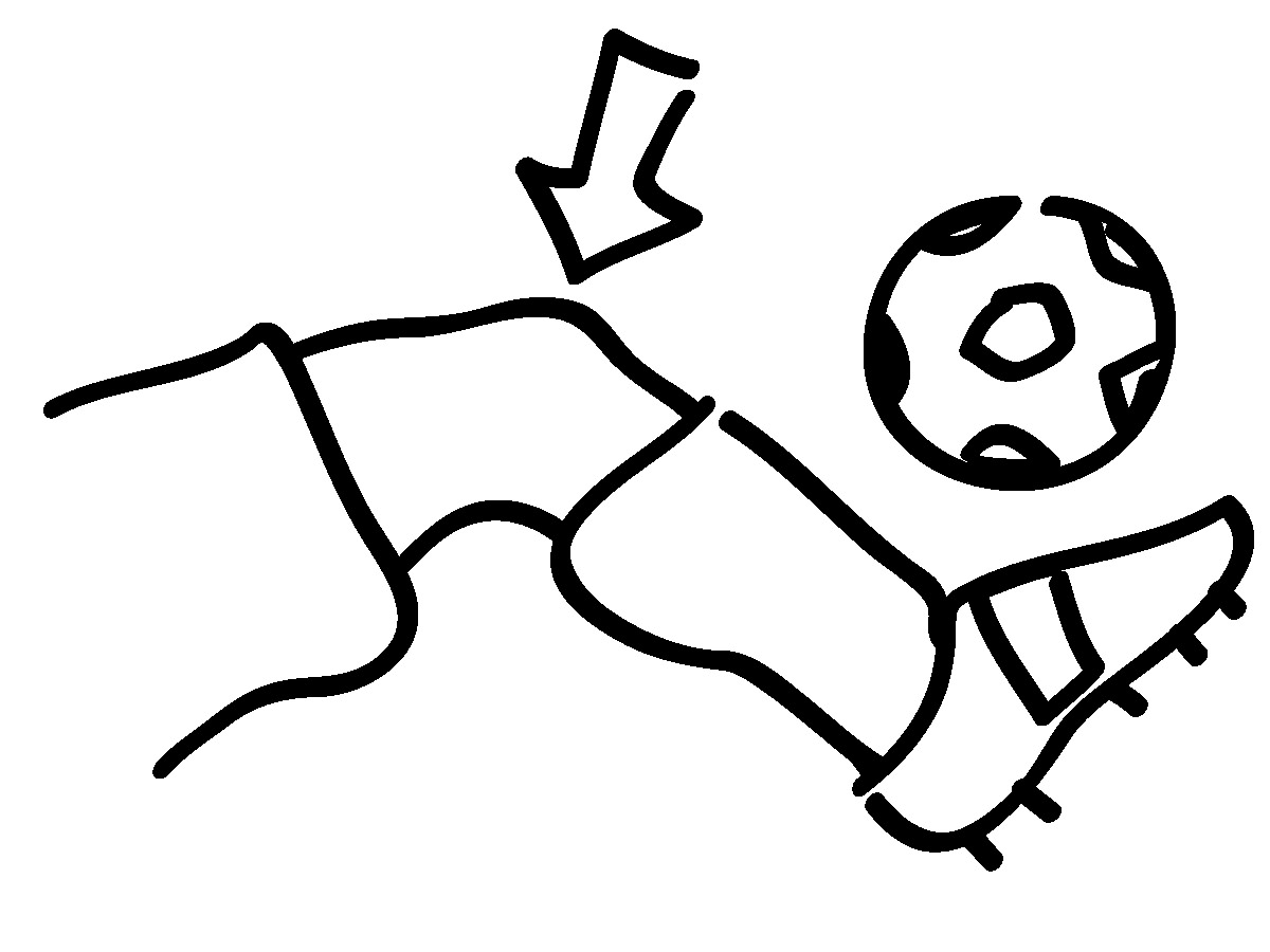 Body Parts   Clipart Panda - Free Clipart Images