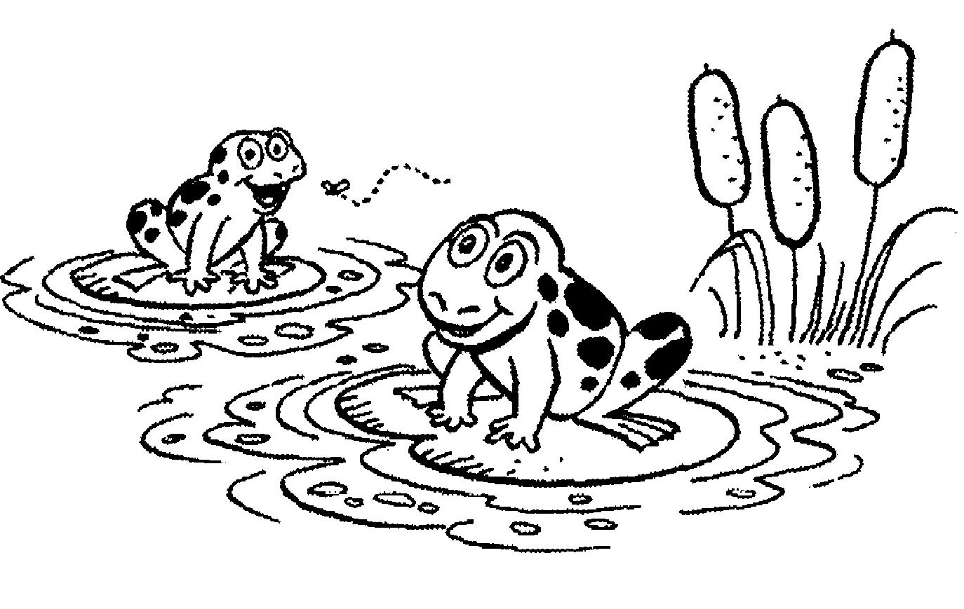 Free Lily Pad Clip Art - Cliparts.co