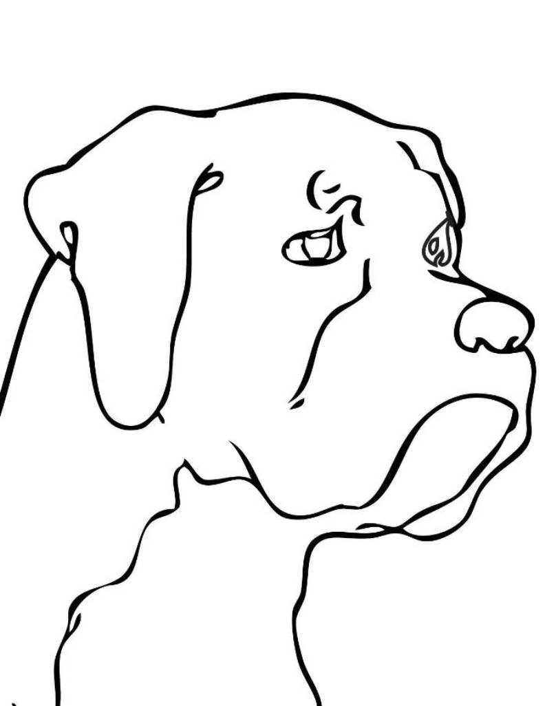 Line Drawing Of A Dog S Face : Dog head clip art cliparts