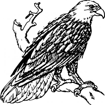 Bald eagle clip art Free vector for free download (about 8 files).