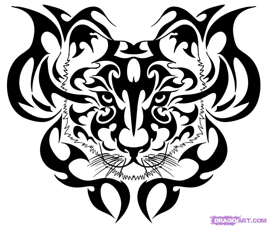 Tiger Eye Drawing Cliparts Co
