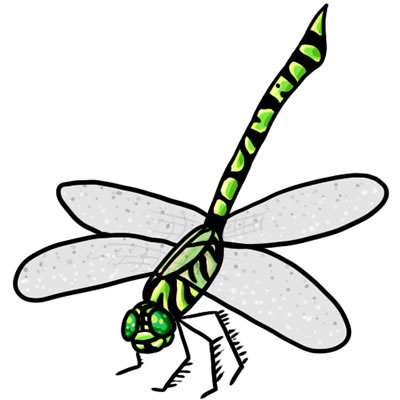 Free Dragonfly Clipart - Cliparts.co