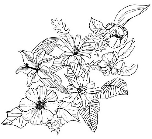 Flowers Drawing - Cliparts.co
