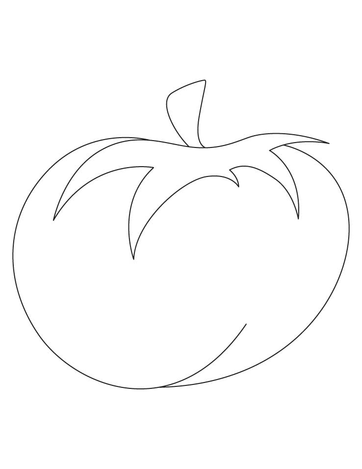 Tomato coloring page the image kid has it for Tomato plant coloring page