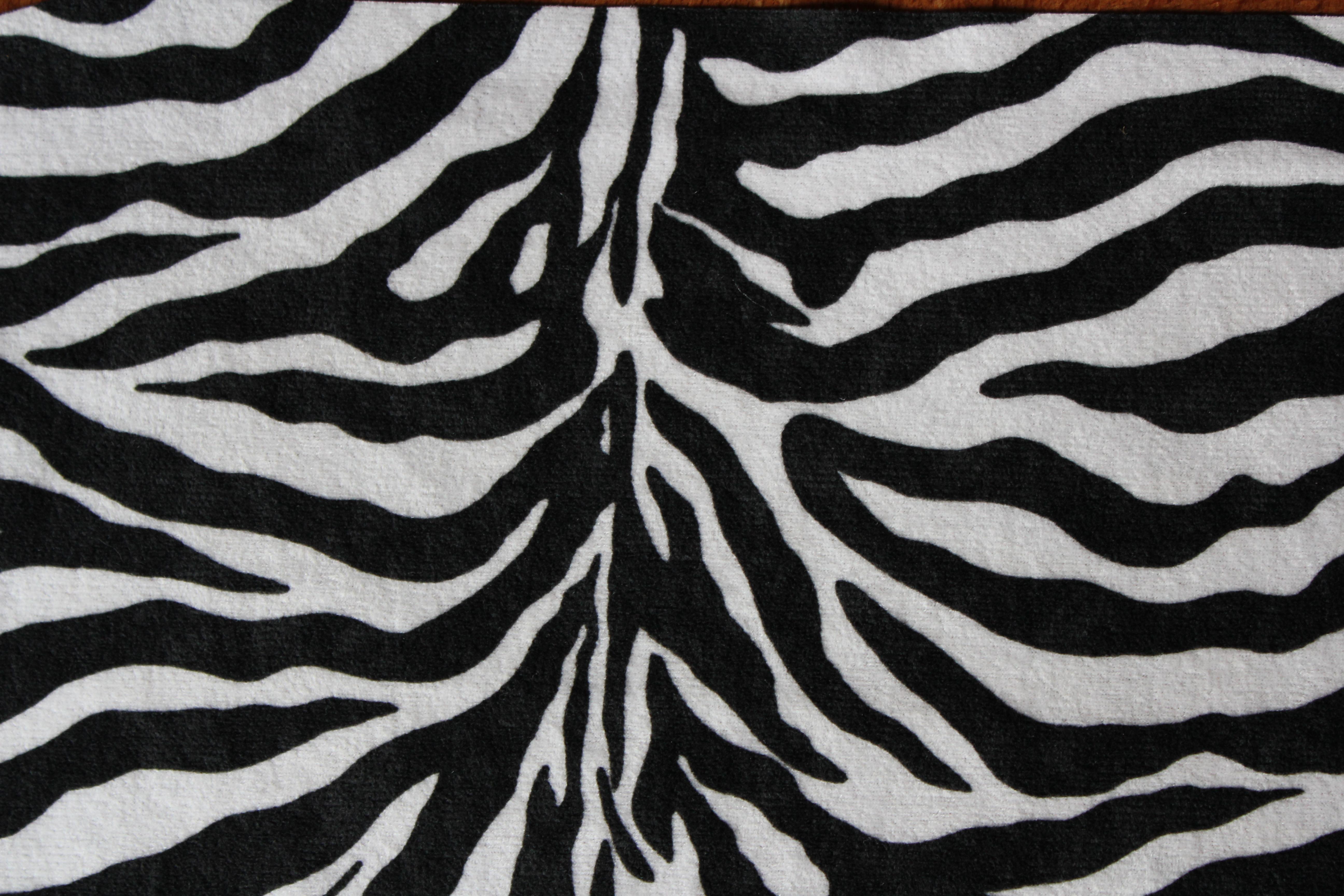 Black and white zebra print background