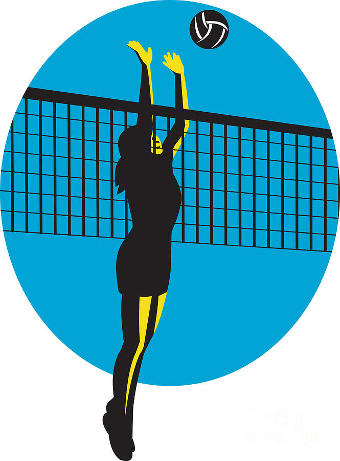 cartoon volleyball net   cliparts co
