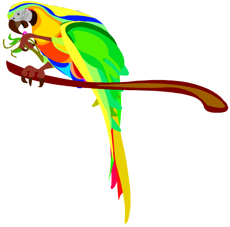 Green parrot images clip art
