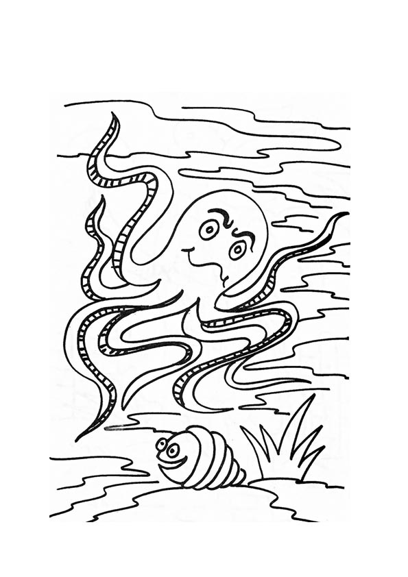 coloring pictures of octopus