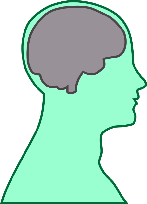 brain human man - vector Clip Art