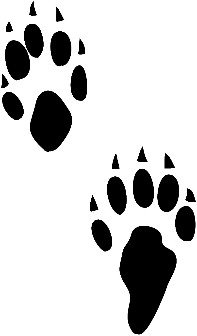 tiger tracks clip art - photo #33