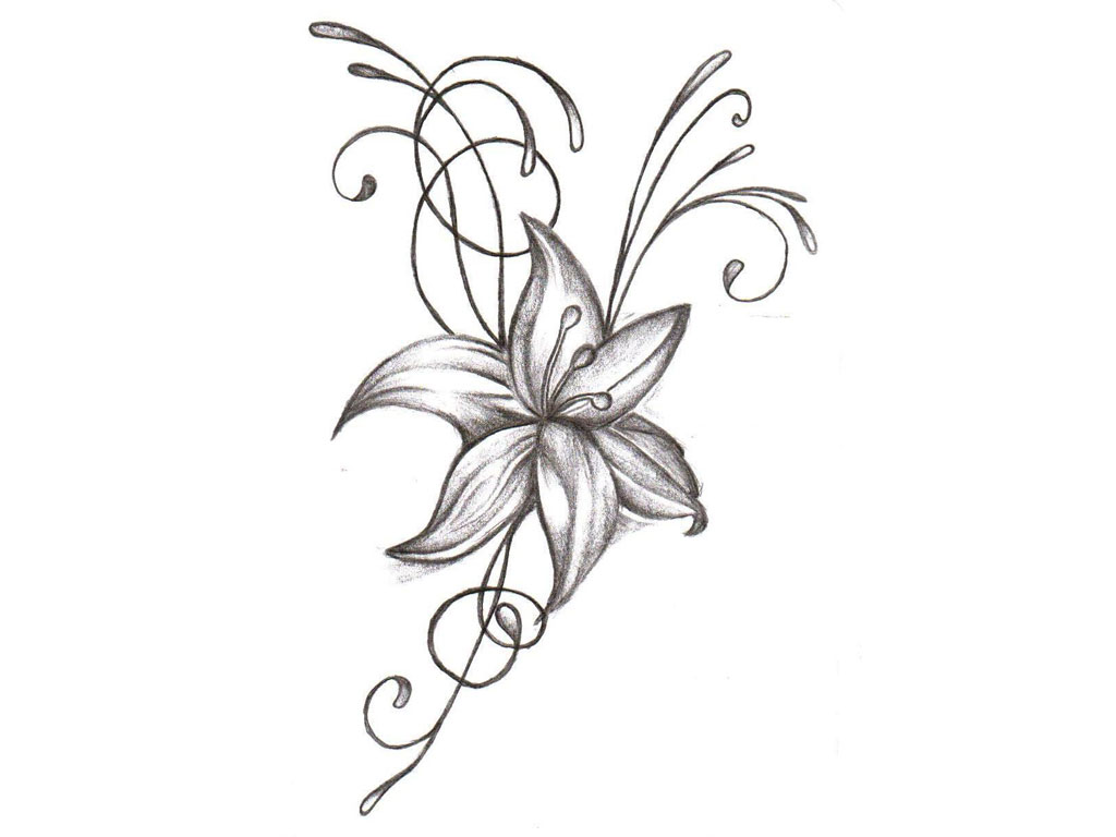 Flower Drawings Cliparts